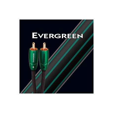 Evergreen 3.5 to rca 1m
